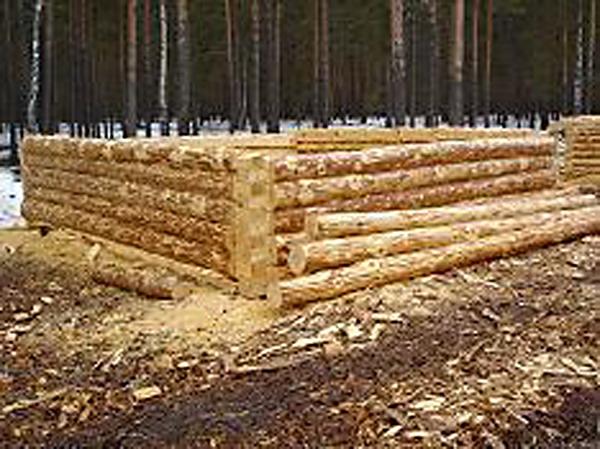 Бригада профессиональных плотников изготовит сруб на дом или баню.  Ель, сосна, пихта.  Размер от 3*3 до 8...